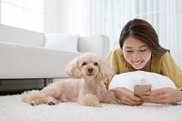 スマートフォンを操作する日本人女性と犬