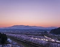 宮城県 船岡城址公園から白石川堤一目千本桜と東北本線 夜景