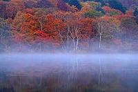 長野県 戸隠高原 朝霧の小鳥ケ池