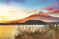 河口湖大石公園付近からの富士山の朝焼けと紅葉