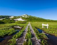 秋田県 竜ヶ原湿原 鳥海山