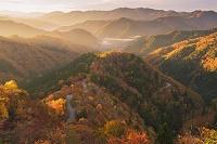 滋賀県 紅葉のおにゅう峠の朝景