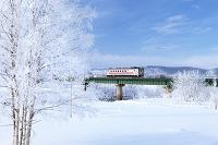 北海道 天塩川の霧氷と列車