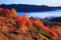 北海道 銀泉台の紅葉