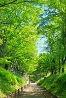 長野県 上田城跡公園