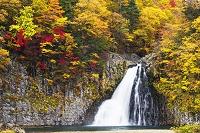 秋田県 紅葉と法体の滝