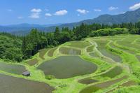 兵庫県 うへ山の棚田(うえやまのたなだ)