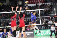 バレーボール:全日本選手権