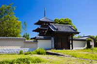 奈良県 緑濃き法起寺