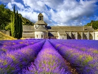 フランス ゴルド セナンク修道院