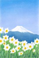 富士と水仙