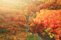 青森県 城ヶ倉大橋から望む城ヶ倉渓谷の紅葉と夕日の光