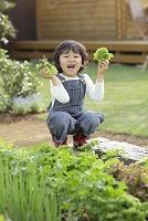 家庭菜園をする男の子