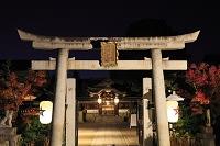 京都府 晴明神社 夜の四神門と本殿