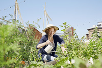 庭で家庭菜園を楽しむ女性