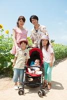 ひまわり畑と笑顔の日本人家族