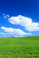 北海道 草原と雲