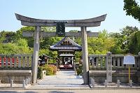 京都府 神泉苑 参道の石鳥居と善女竜王社