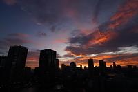 東京 豊洲の夕景