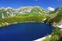 富山県 立山黒部アルペンルート 室堂平 ミクリガ池と雄山