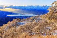 長野県 霧氷の高ボッチ高原より諏訪湖朝景