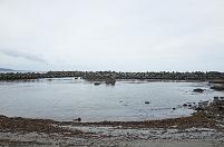 波消しブロックと囲われた砂浜