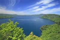 青森県 瞰湖台からの新緑の十和田湖