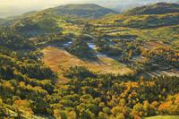 群馬県 志賀高原 日本国道最高地点より望む朝の芳ヶ平湿原