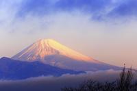 静岡県 朝日に照らされる富士山と雲海
