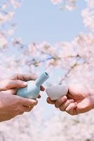 お花見 桜咲く春の下で日本酒を注ぐ