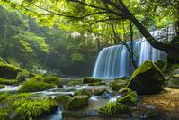 熊本県 小国町 鍋ヶ滝
