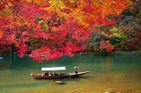 京都市嵐山 屋形船