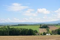 青空と農地