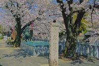 岐阜県 奥の細道むすびの地