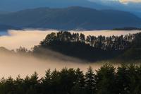 長野県 大峰高原の夜明けに雲海