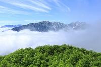 長野県 北アルプス 爺ヶ岳中腹より見る山並みと青空