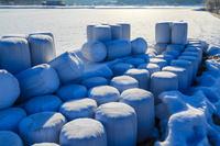 広島県 雪原に積まれた稲わらロール