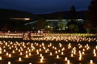 奈良県 燈花会
