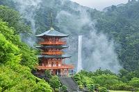 和歌山県 雨の青岸渡寺三重塔と那智滝