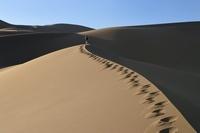 イラン カヴィール砂漠