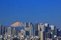 東京都 新宿高層ビル群と富士山