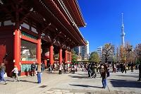 東京都 宝蔵門とスカイツリー