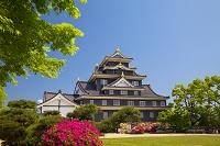 岡山県 岡山城