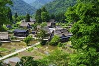 富山県 五箇山 相倉集落