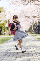 桜並木と小学生