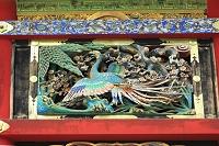 栃木県 日光東照宮 回廊の野鳥彫刻