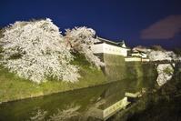 山形県 霞城公園 山形城 東大手門と夜桜