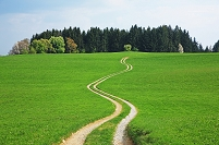 ドイツ 草原の道