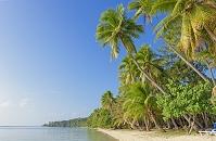 フィジー ヤサワ諸島