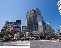 東京都 渋谷駅前交差点
